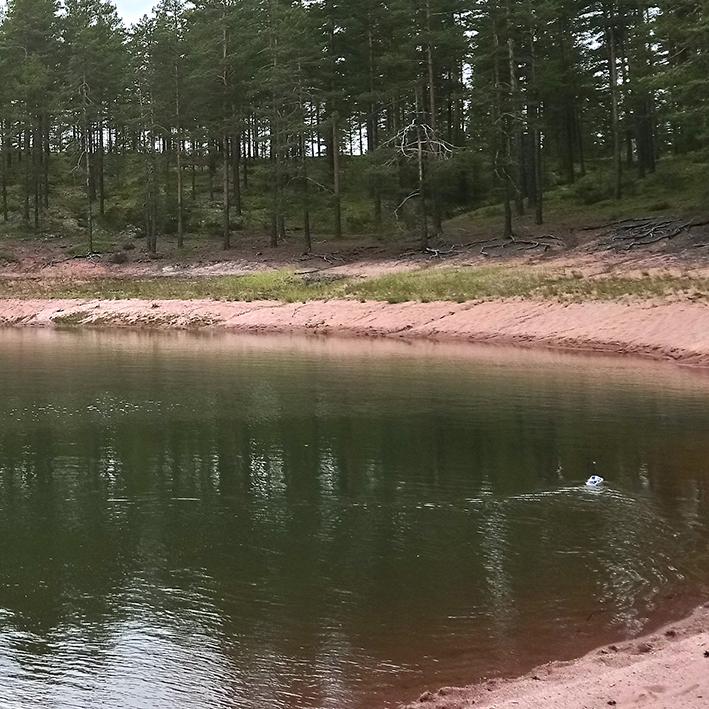 nettisivujen-kuvat-kankaanjärvi-2.jpg